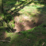 This photo might not show it well, but it is of a fox hole that was on one of the defensive perimeters near Bastogne. It's amazing that nearly 70 years after the battle there are so many fox holes in the Ardennes Forest.